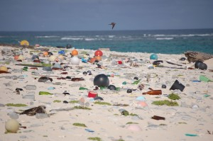 beach-litter-hawaii