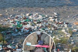beach-toothbrush-trash-bottles