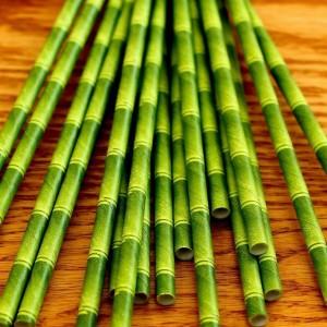 Bamboo-Paper-Straws