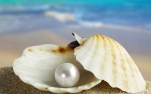 seashell-pearl-1920x1200